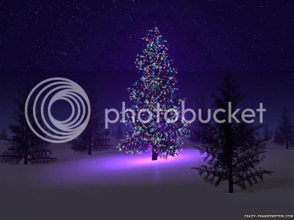 beautiful-christmas-tree.jpg picture by romantik1109