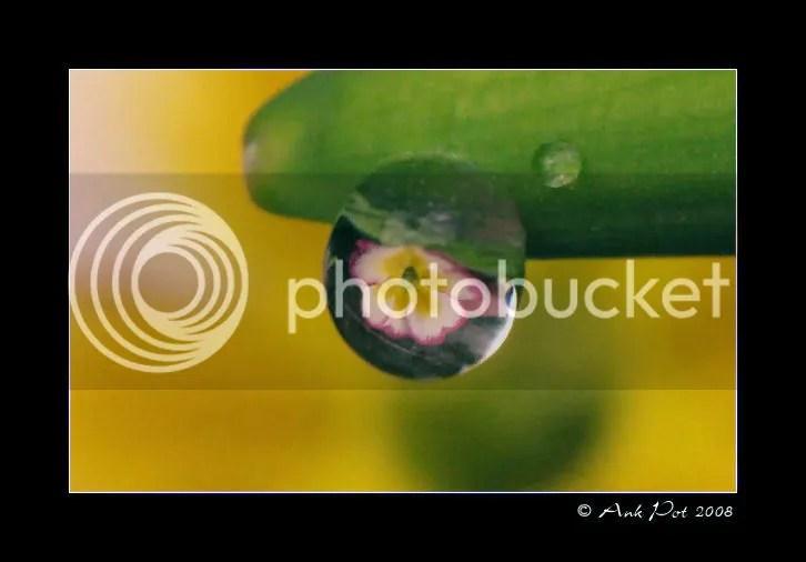 Log27-2-08-2.jpg