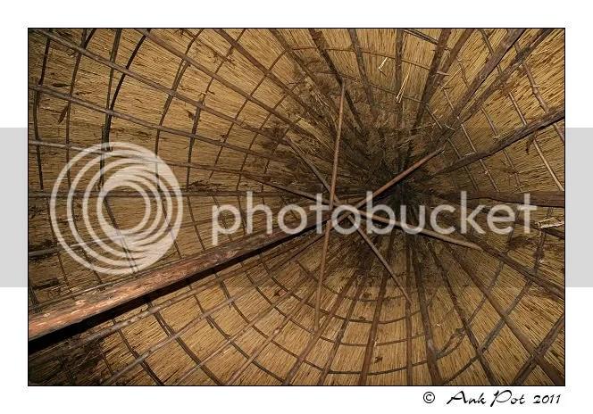 Log26-6-11-1.jpg