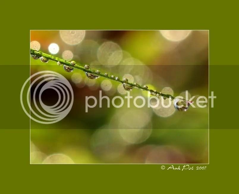 Log26-10-07-4.jpg
