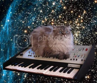 spacecat.jpg image by clarkgriswald5