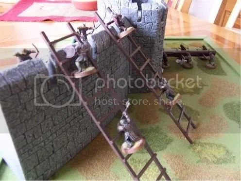 Siege Ladders painted