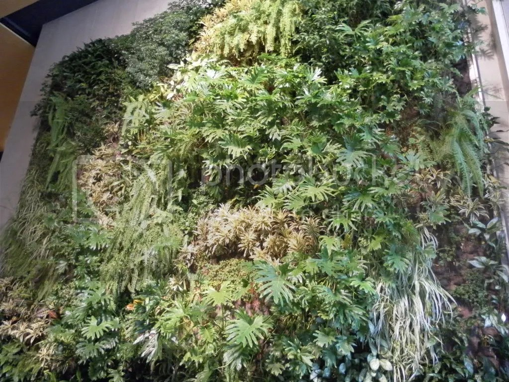 Lincoln Center 20x20 living wall