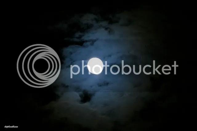 https://i1.wp.com/i155.photobucket.com/albums/s301/nguyenvolam/4170549594_386c7f6116_z.jpg