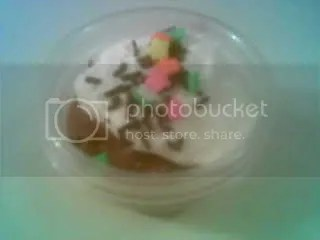 snack cup2