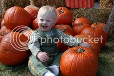 Gratuitously cute pumpkin patch picture