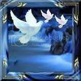 doves on blue picture