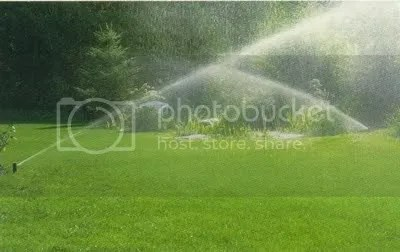 A wide lawn with active water-sprinklers