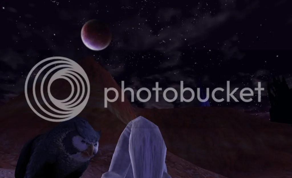 Erd taking his pack out into the Desert photo ErdtakinghispackoutintotheDesert_zpsce02f338.jpg