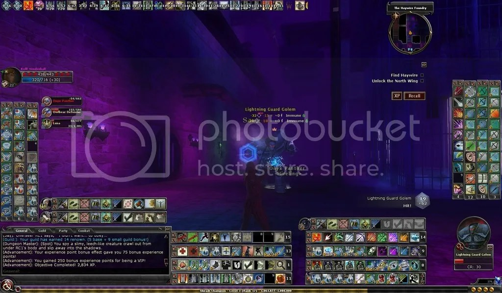 photo Kolll fighting the Lightning Guard Golem in VON 4_zpsvbwagyzx.jpg