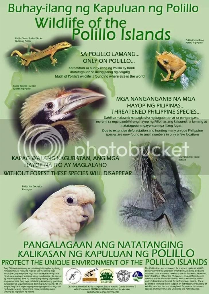 Wildlife of the Polillo Islands