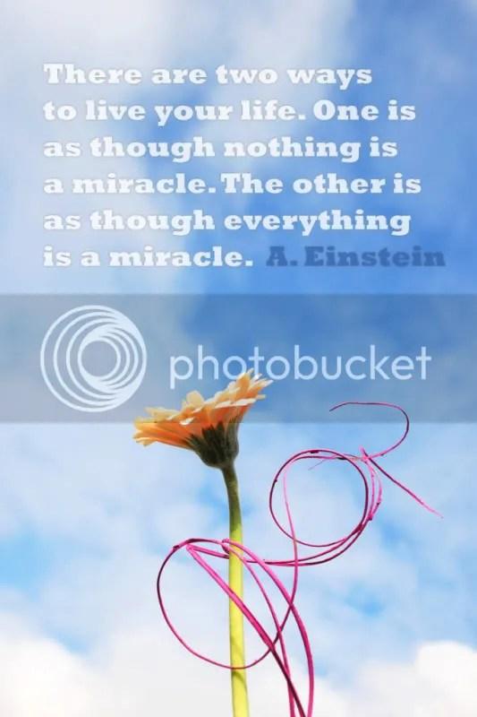 Milagre Vida