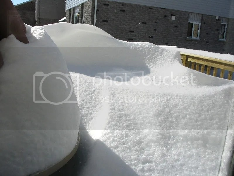 Neige 2 - Snow 2