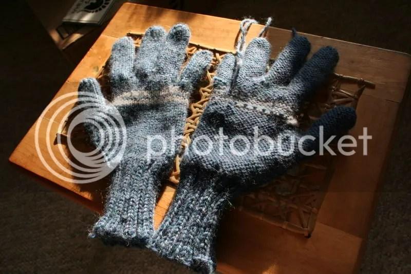 shell's gloves