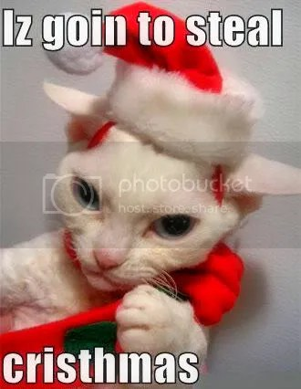 Grinch Kitty