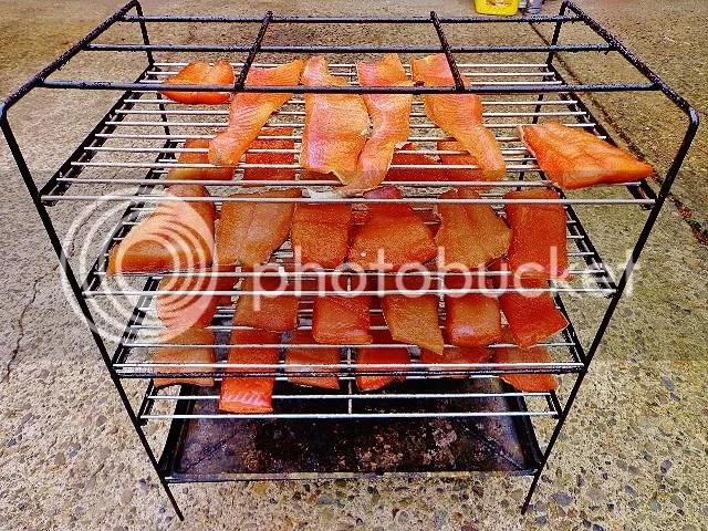 photo Smoking Salmon_zps3561nomi.jpg