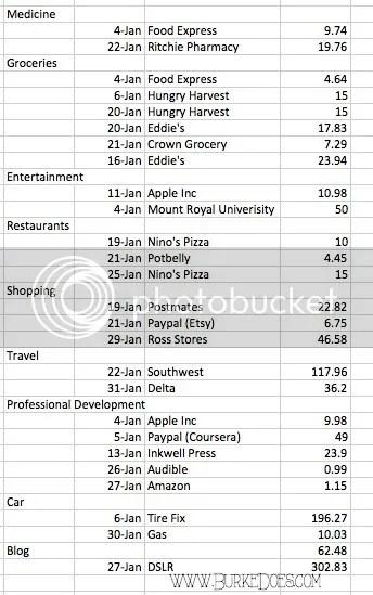 photo january-spending_zpst3otyqiq.jpg