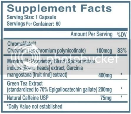 Dietspotlight Burn ingredients