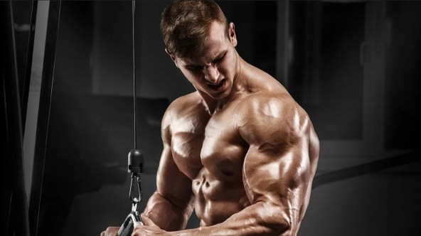 marine muscle drill master supplement