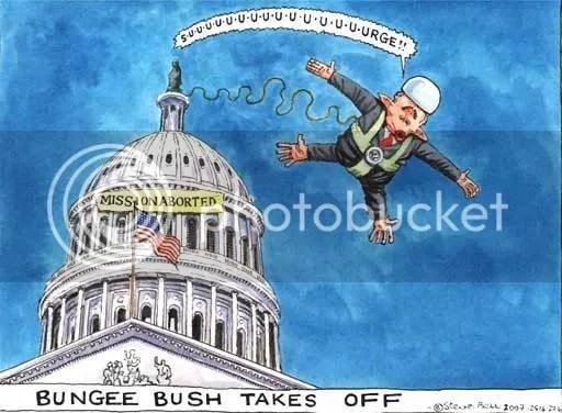 Bush surge