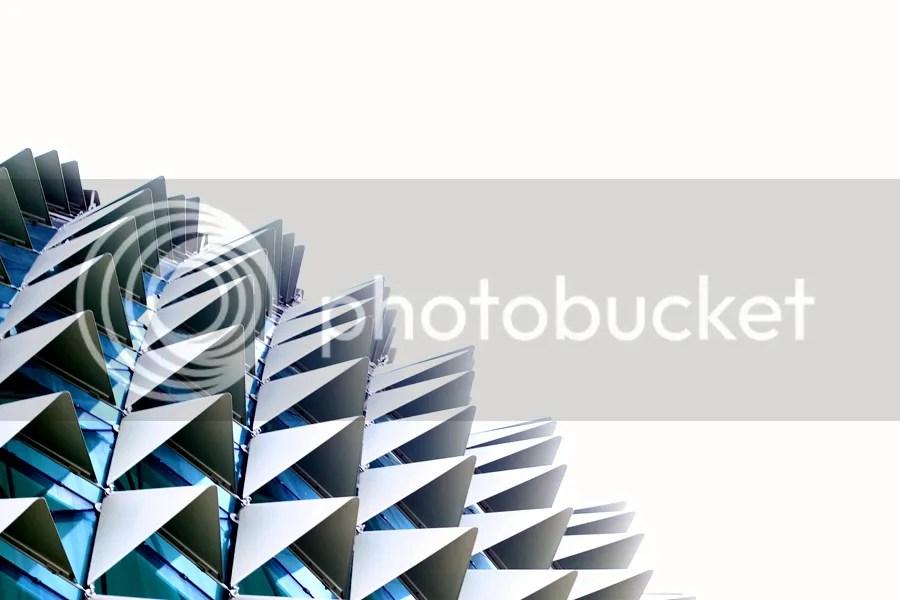 photo IMG_3650.jpg