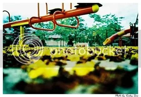 黃花 遊樂場
