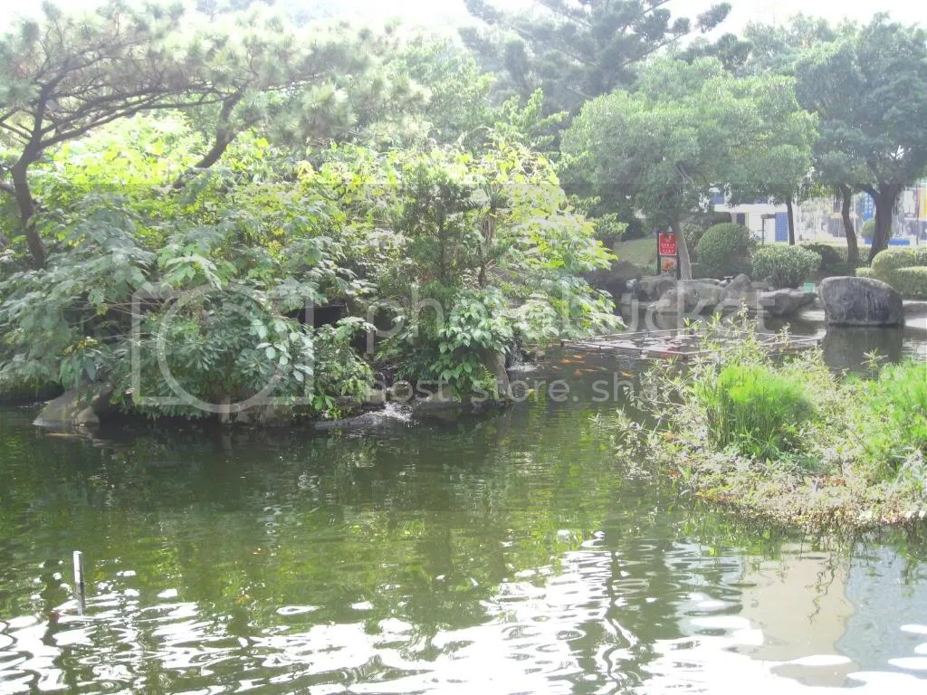 More pond~