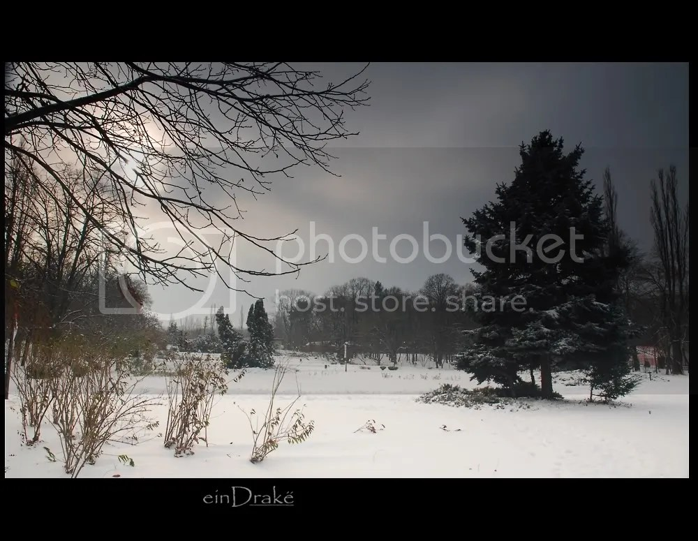 Winter in Herastrau