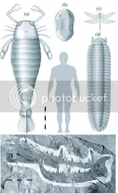 Ancient Scorpion