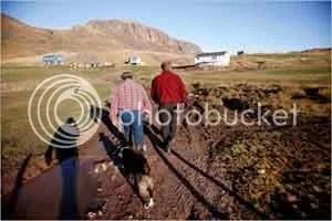 Greeland Farmers