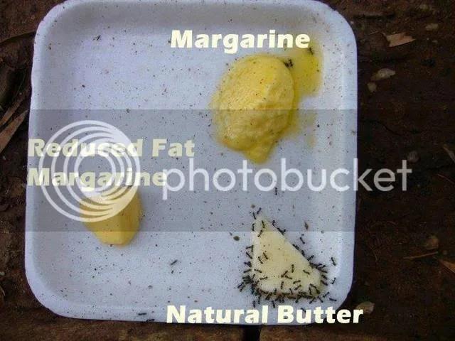 margarine_zpse17edd43.jpg