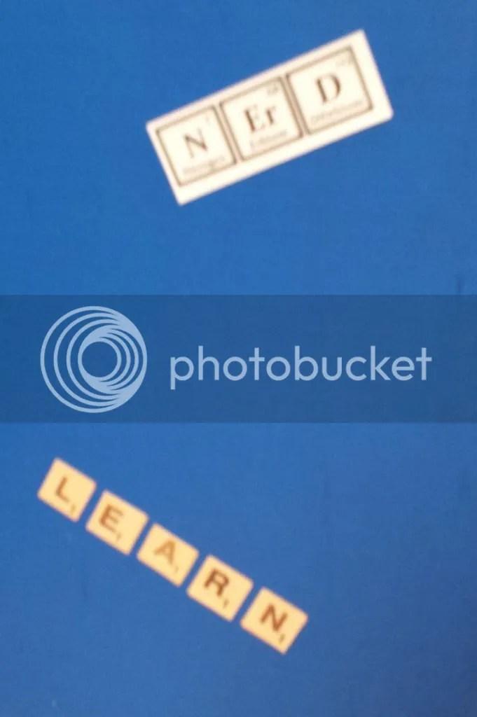 photo 1602ba17-325b-4bc5-ae52-33e77bb343e6.jpg