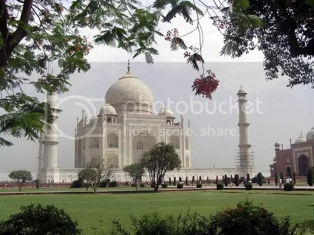 taj_and_gulmohar_modified.jpg picture by springautumn_2007