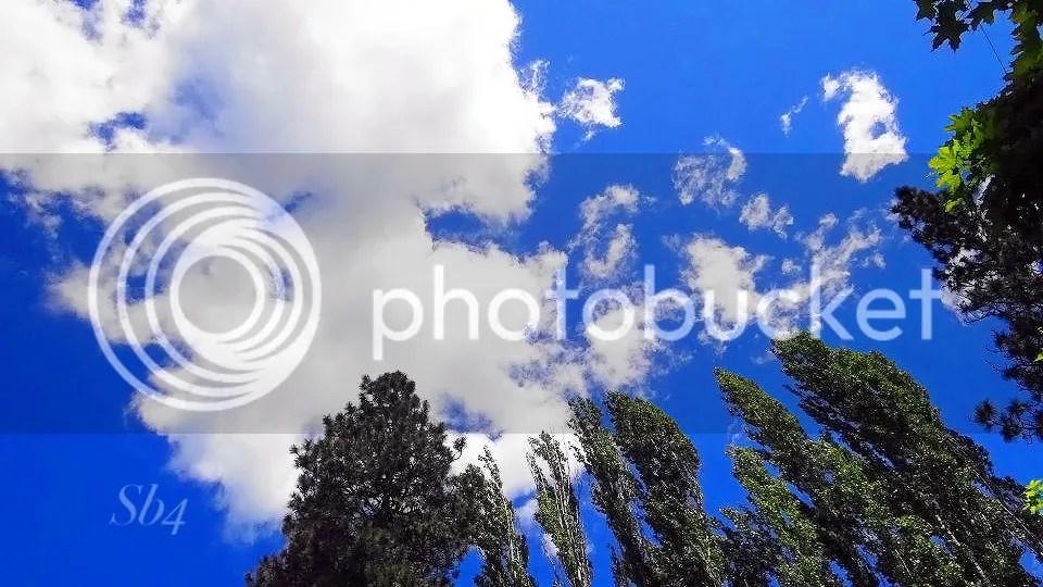 photo Sky WM_zpsjkj2rrpb.jpg