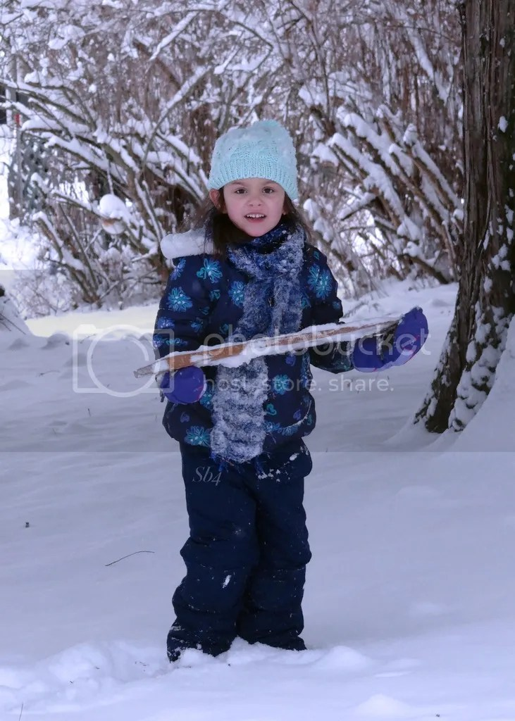 photo Winter Wonderland 4 WM_zpsqhsdrnyj.jpg