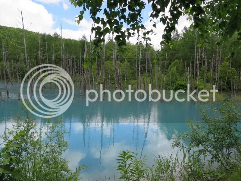 Biei blue pond wallpaper
