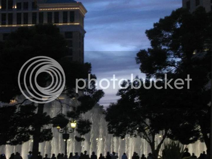 photo 39855_468973946208_4941256_n.jpg