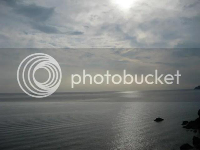 photo 563303_10151093449396209_709060254_n.jpg