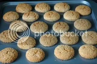 Honey Coconut Biscuits