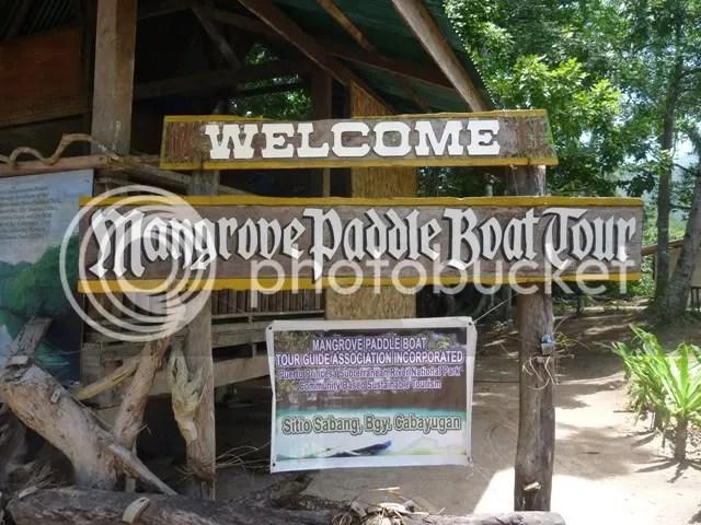 Mangrove Paddle Boat Tour