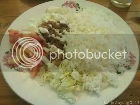 World Class Persian Kabab_chicken shawarma rice
