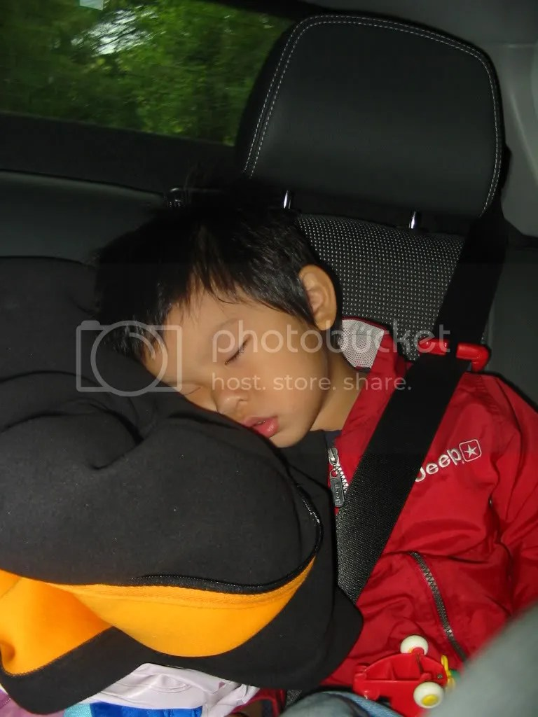 Tobias Asleep in Car