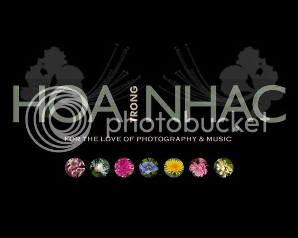 https://i1.wp.com/i195.photobucket.com/albums/z149/minh40/HoaTrongNhac/hoanhac1.jpg
