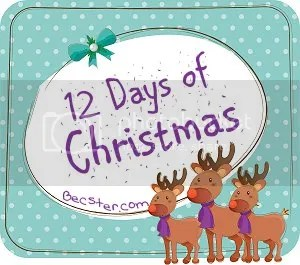 12 Days of Christmas - Becster.com Link Up!