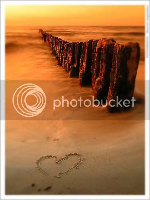 Love_3_by_mjagiellicz.jpg image by zeks_photos