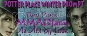 Potter Place Winter Prompt 3rd Place