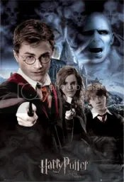 Harry Potter Order of the Phoenix promo poster -- Harry, Hermione, Ron and Voldemort
