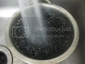 rinsing beans in a steel pot