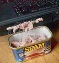 modern day Spam