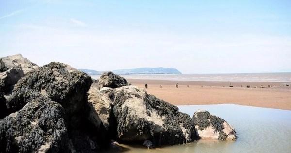 Travel review: Hoburne Blue Anchor, North Somerset ...